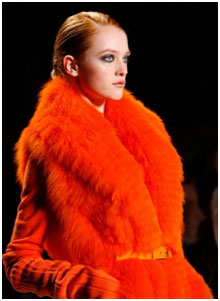 Orange Fun Fur